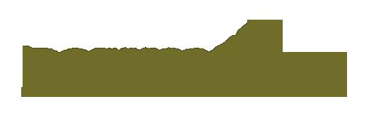 logo-BODYCOMBAT